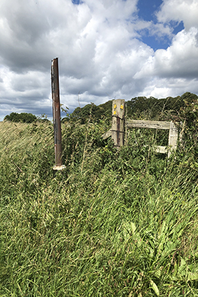 photo of a stile in a field